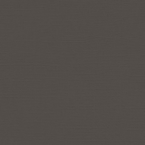 "My Colors Canvas 80 lb. Textured Cardstock Charcoal 12 x 12: Black/Gray, Sheet, 25 Sheets, 12"" x 12"", Canvas, 80 lb, (model T05101017), price per 25 Sheets"