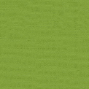 "My Colors Canvas 80 lb. Textured Cardstock Mint Julep 12 x 12; Color: Green; Format: Sheet; Quantity: 25 Sheets; Size: 12"" x 12""; Texture: Canvas; Weight: 80 lb; (model T055516), price per 25 Sheets"