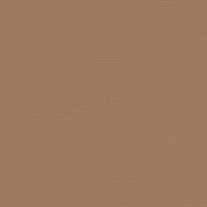 "My Colors Canvas 80 lb. Textured Cardstock Chamois 12 x 12; Color: Brown; Format: Sheet; Quantity: 25 Sheets; Size: 12"" x 12""; Texture: Canvas; Weight: 80 lb; (model T058810), price per 25 Sheets"