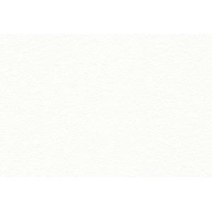 """Canson® En-Tout-Cas (Lavis Fidelis) 19 1/2"""" x 25 1/2"""" Watercolor Sheets; Color: White/Ivory; Format: Sheet; Size: 19 1/2"""" x 25 1/2""""; (model C100511133), price per sheet"""