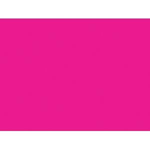 Winsor & Newton™ Galeria™ Acrylic Color 250ml Permanent Rose: Red/Pink, Jar, 250 ml, Acrylic, (model 2137502), price per each