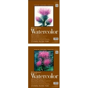 "Strathmore 400 Series Watercolor Paper: Sheet Stock, 2 Deckle Edges, 22"" x 30"", Single"