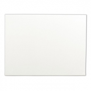 "Winsor & Newton Artists' Cotton Canvas Board: Single, 16"" x 20"""