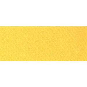 "Canson® Mi-Teintes® 19"" x 25"" Pastel Sheet Pack Canary; Color: Yellow; Format: Sheet; Size: 19"" x 25""; Texture: Rough; (model C100511241), price per sheet"