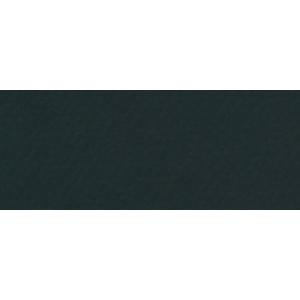 "Canson® Mi-Teintes® 19"" x 25"" Pastel Sheet Pack Stygian Black; Color: Black/Gray; Format: Sheet; Size: 19"" x 25""; Texture: Rough; (model C100511243), price per sheet"