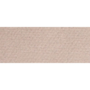 "Canson® Mi-Teintes® 19"" x 25"" Pastel Sheet Pack Moonstone; Color: Brown; Format: Sheet; Size: 19"" x 25""; Texture: Rough; (model C100511244), price per sheet"