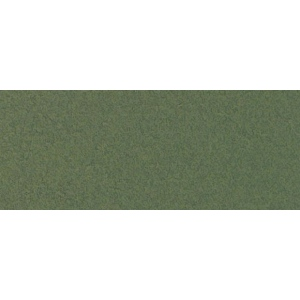 """Canson® Mi-Teintes® 19 x 25 Pastel Sheet Pack Ivy; Color: Green; Format: Sheet; Size: 19"""" x 25""""; Texture: Rough; (model C100511247), price per sheet"""