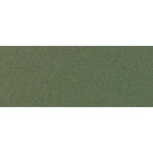 "Canson® Mi-Teintes® 19 x 25 Pastel Sheet Pack Ivy: Green, Sheet, 19"" x 25"", Rough, (model C100511247), price per sheet"