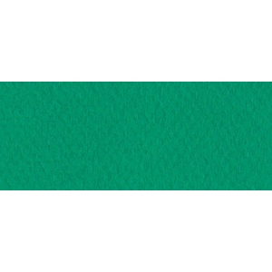 "Canson® Mi-Teintes® 19"" x 25"" Pastel Sheet Pack Viridian; Color: Green; Format: Sheet; Size: 19"" x 25""; Texture: Rough; (model C100511263), price per sheet"