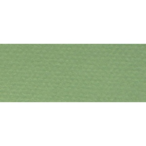 "Canson® Mi-Teintes® 8.5"" x 11"" Pastel Sheet Pad Green; Color: Green; Format: Sheet; Size: 8 1/2"" x 11""; Texture: Rough; (model C100511310), price per sheet"