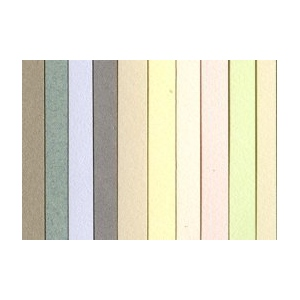 "Canson® Mi-Teintes® 19"" x 25"" Pastel Sheet 10 pack Pack Pastel Colors; Binding: Fold Over; Color: Multi; Format: Pad; Quantity: 10 Sheets; Size: 19"" x 25""; (model C100511337), price per 10 Sheets"