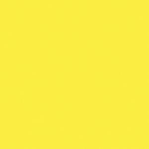 Finetec Transparent Watercolor Refill Pan Yellow; Color: Yellow; Format: Pan; Refill: Yes; Type: Watercolor; (model LT12/01), price per box