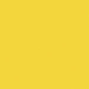 Finetec Opaque Watercolor Refill Pan Indian Yellow: Yellow, Pan, Refill, Watercolor, (model LO12/17), price per box