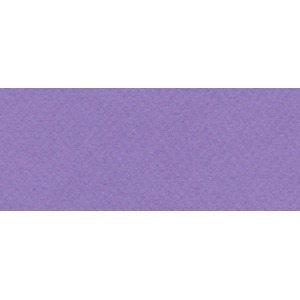 "Canson® Mi-Teintes® 19"" x 25"" Pastel Sheet Pack Parma: Purple, Sheet, 19"" x 25"", Rough, (model C100511274), price per sheet"