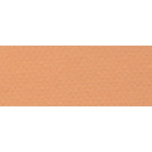 "Canson® Mi-Teintes® 8.5"" x 11"" Pastel Sheet Pad Buff: Orange, Sheet, 8 1/2"" x 11"", Rough, (model C100511300), price per sheet"
