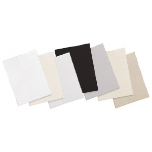 "Canson® Edition™ 22"" x 30"" Printmaking Sheet Pack Antique White; Color: White/Ivory; Format: Sheet; Quantity: 25 Sheets; Size: 22"" x 30""; Texture: Medium; (model C100511189), price per sheet"