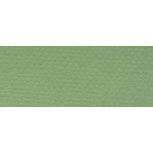 """Canson® Mi-Teintes® 19"""" x 25"""" Pastel Sheet Pack Green; Color: Green; Format: Sheet; Size: 19"""" x 25""""; Texture: Rough; (model C100511250), price per sheet"""