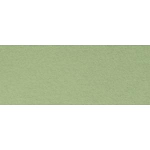 "Canson® Mi-Teintes® 19"" x 25"" Pastel Sheet Pack Light Green; Color: Green; Format: Sheet; Size: 19"" x 25""; Texture: Rough; (model C100511251), price per sheet"