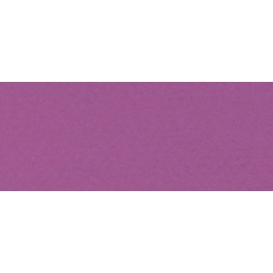 "Canson® Mi-Teintes® 19"" x 25"" Pastel Sheet Pack Violet; Color: Purple; Format: Sheet; Size: 19"" x 25""; Texture: Rough; (model C100511261), price per sheet"