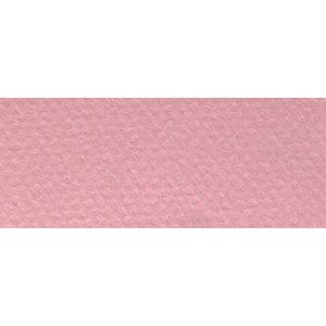 "Canson® Mi-Teintes® 8.5"" x 11"" Pastel Sheet Pad Orchid: Red/Pink, Sheet, 8 1/2"" x 11"", Rough, (model C100511297), price per sheet"