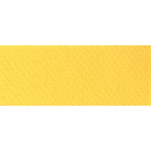 """Canson® Mi-Teintes® 8.5"""" x 11"""" Pastel Sheet Pad Canary; Color: Yellow; Format: Sheet; Size: 8 1/2"""" x 11""""; Texture: Rough; (model C100511301), price per sheet"""