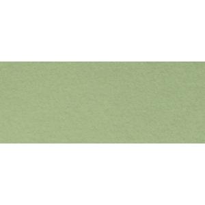 "Canson® Mi-Teintes® 8.5"" x 11"" Pastel Sheet Pad Light Green: Green, Sheet, 8 1/2"" x 11"", Rough, (model C100511311), price per sheet"