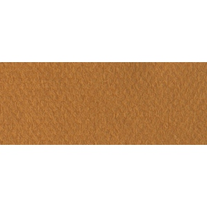 "Canson® Mi-Teintes® 8.5"" x 11"" Pastel Sheet Pad Bisque; Color: Brown; Format: Sheet; Size: 8 1/2"" x 11""; Texture: Rough; (model C100511316), price per sheet"