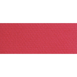 """Canson® Mi-Teintes® 8.5"""" x 11"""" Pastel Sheet Pad Red; Color: Red/Pink; Format: Sheet; Size: 8 1/2"""" x 11""""; Texture: Rough; (model C100511319), price per sheet"""
