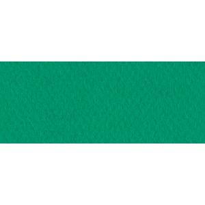 """Canson® Mi-Teintes® 8.5"""" x 11"""" Pastel Sheet Pad Viridian: Green, Sheet, 8 1/2"""" x 11"""", Rough, (model C100511323), price per sheet"""