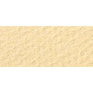 "Canson® Mi-Teintes® 16"" x 20"" Art Board Champagne: White/Ivory, Yellow, Sheet, 16"" x 20"", (model C100510145), price per sheet"