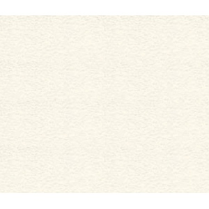 "Arches® 16"" x 20"" Watercolor Rough Art Board; Color: White/Ivory; Format: Sheet; Size: 16"" x 20""; Texture: Rough; (model C100510173), price per sheet"