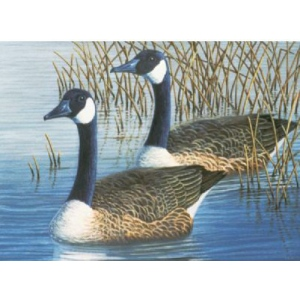"Royal & Langnickel® Painting by Numbers™ 12 3/4 x 15 3/4 Adult Set Geese; Board Size: 12 3/4"" x 15 3/4""; (model PAL35), price per set"