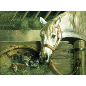 Reeves™ Large Painting By Numbers Horse And Kitten, (model PBNACL10), price per each