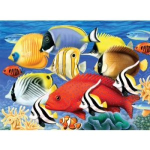 "Royal & Langnickel® Painting by Numbers™ 11 1/4 x 15 3/8 Junior Large Set Tropical Fish; Board Size: 11 1/4"" x 15 3/8""; (model PJL30), price per set"
