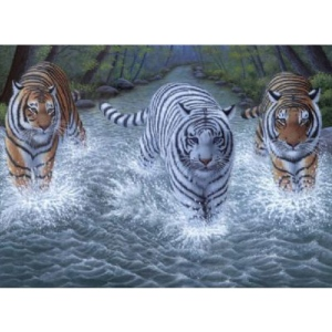 "Royal & Langnickel® Painting by Numbers™ 11 1/4 x 15 3/8 Junior Large Set Three Tigers; Board Size: 11 1/4"" x 15 3/8""; (model PJL34), price per set"
