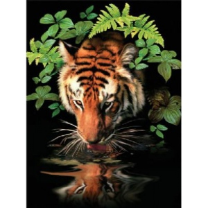 "Royal & Langnickel® Painting by Numbers™ 8 3/4 x 11 3/8 Junior Small Set Thirsty Tiger; Board Size: 8 3/4"" x 11 3/8""; (model PJS57), price per set"