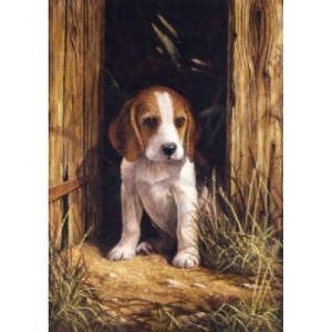 "Royal & Langnickel® Painting by Numbers™ 8 3/4 x 11 3/8 Junior Small Set Beagle Puppy; Board Size: 8 3/4"" x 11 3/8""; (model PJS58), price per set"
