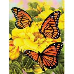 "Royal & Langnickel® Painting by Numbers™ 8 3/4 x 11 3/8 Junior Small Set Majestic Butterfly; Board Size: 8 3/4"" x 11 3/8""; (model PJS68), price per set"