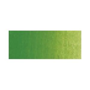 Winsor & Newton™ Cotman™ Watercolor 8ml Sap Green: Green, Tube, 8 ml, Watercolor, (model 0303599), price per tube