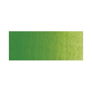 Winsor & Newton Cotman Watercolor Paints: Price Series 1, Sap Green, 21ml