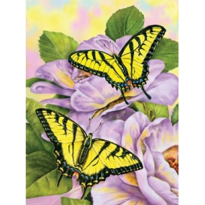 """Royal & Langnickel® Painting by Numbers™ 8 3/4 x 11 3/8 Junior Small Set Swallowtail Butterflies: 8 3/4"""" x 11 3/8"""", (model PJS69), price per set"""