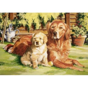 Reeves™ Large Acrylic Painting By Numbers Set Dog World, (model PL100), price per each