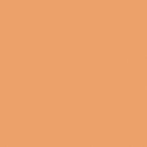 Finetec Transparent Watercolor Refill Pan Flesh Tone: Orange, Pan, Refill, Watercolor, (model LT12/23), price per box