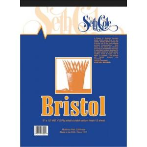 "Seth Cole 14 x 17 Vellum Finish Bristol Board Pad; Finish: Vellum; Format: Pad; Quantity: 12 Sheets; Size: 14"" x 17""; Weight: 100 lb; (model SC67VB), price per 12 Sheets pad"