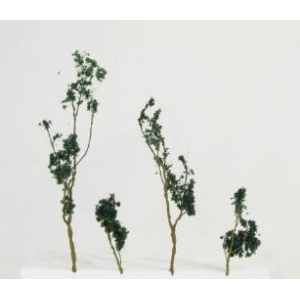 """Wee Scapes™ Architectural Model Foliage Tree Dark Green 24-Pack.; Color: Green; Material: Wire; Quantity: 24-Pack; Size: 1 1/2"""" - 3""""; Type: Tree; (model WS00310), price per 24-Pack"""