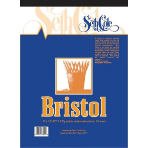 "Seth Cole 9 x 12 Vellum Finish Bristol Board Pad; Finish: Vellum; Format: Pad; Quantity: 12 Sheets; Size: 9"" x 12""; Weight: 100 lb; (model SC67V), price per 12 Sheets pad"
