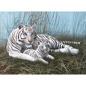 "Royal & Langnickel® Painting by Numbers™ 11 1/4 x 15 3/8 Junior Large Set White Tigers; Board Size: 11 1/4"" x 15 3/8""; (model PJL22), price per set"
