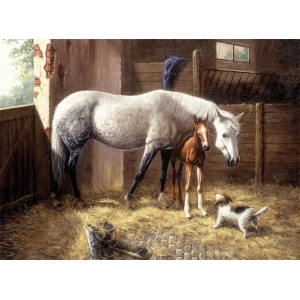 "Royal & Langnickel® Painting by Numbers™ 12 3/4 x 15 3/4 Adult Set New Friends; Board Size: 12 3/4"" x 15 3/4""; (model PAL24), price per set"