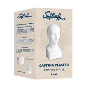 Sculpture House Casting Plaster-Case