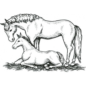 Sarasota Stamps Mounted Rubber Stamp Mare/Colt ; Material: Rubber; Mounted: Yes; (model SSD-1024), price per each